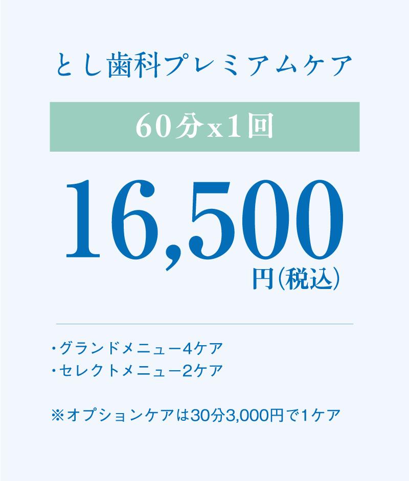 とし歯科プレミアムケア 60分x1回 16,500円(税込)