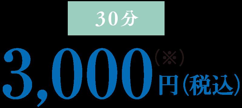 30分3,000円(税込)